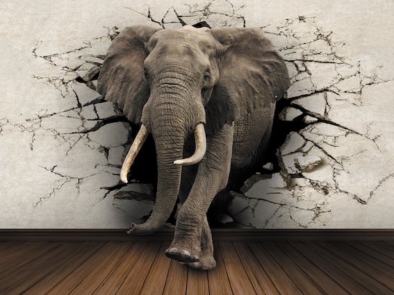 elephant impression murale